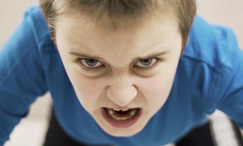 Agresividad Infantil. Cómo manejar la agresividad en los hijos