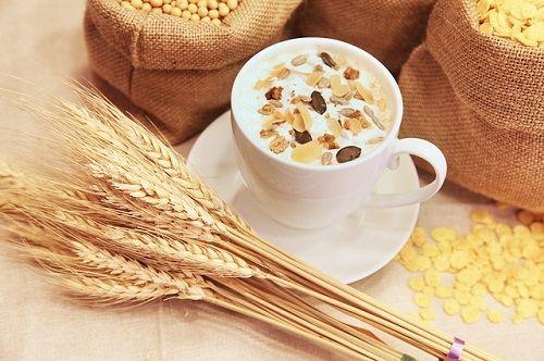 Celiaquía o intolerancia al gluten de los cereales