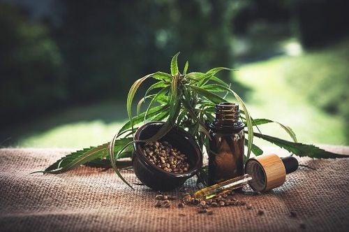 El aceite de cannabis se puede usar por vía transdérmica