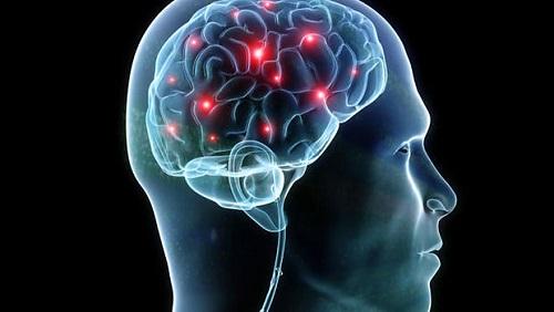 Disfunciones cerebrales en las parafilias