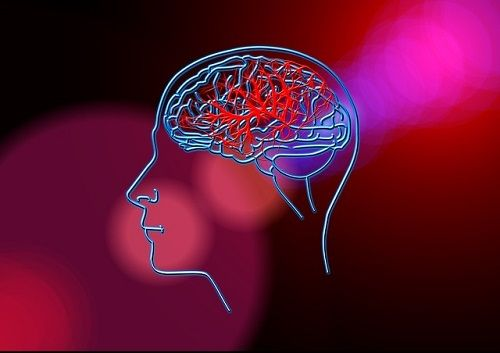 La envidia activa circuitos cerebrales.